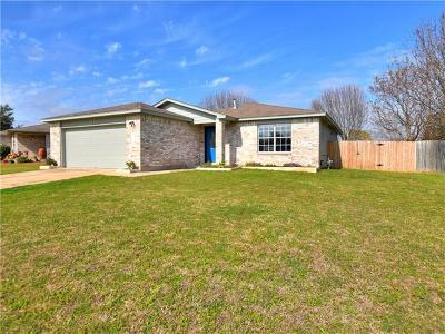 Kyle Single Family Home For Sale: 156 Spring Branch Loop