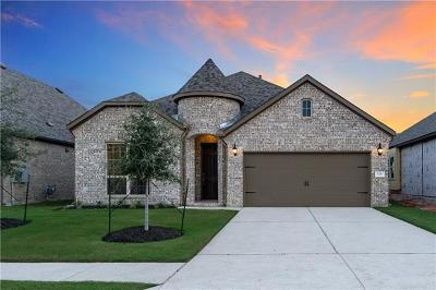 Leander Single Family Home For Sale: 528 Mistflower Springs Dr