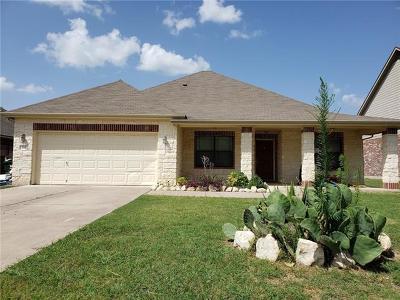 Kyle Single Family Home For Sale: 165 Prairie Dawn