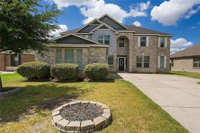 Pflugerville Single Family Home For Sale: 18616 Pencil Cactus Dr