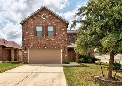 Hays County, Travis County, Williamson County Single Family Home For Sale: 8704 Panadero Dr