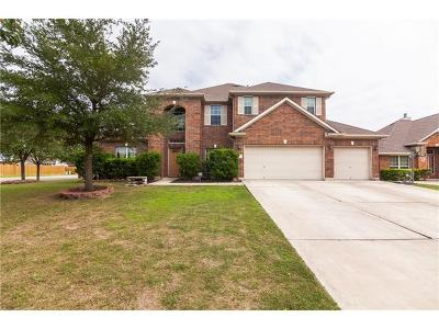 Kyle Single Family Home For Sale: 156 Pecanwood