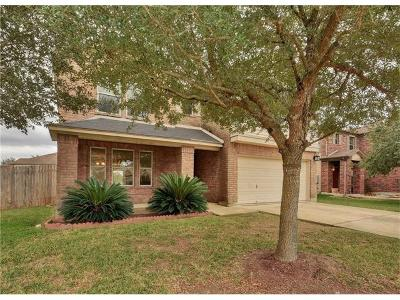 Kyle Single Family Home For Sale: 580 Waterleaf Blvd