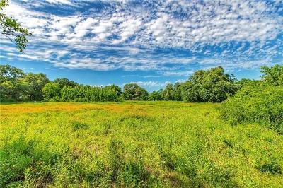 Burnet County, Lampasas County, Bell County, Williamson County, llano, Blanco County, Mills County, Hamilton County, San Saba County, Coryell County Farm For Sale: 201 Rundberg Dr