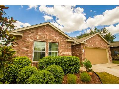 Austin Single Family Home For Sale: 238 Stone View Trl