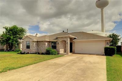 Hutto Single Family Home For Sale: 1110 Delia Chapa