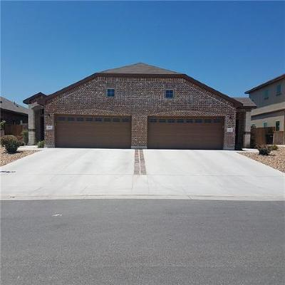 New Braunfels Multi Family Home For Sale: 335 Creekside Curv