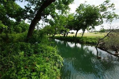 Liberty Hill Farm For Sale: Tract 3 County Road 236