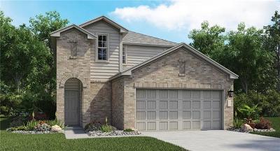 Austin Single Family Home For Sale: 10701 Dimitrios Dr