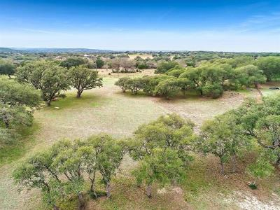 Dripping Springs Residential Lots & Land For Sale: 184 Dos Lagos Dr