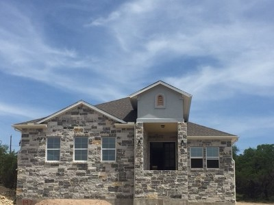 Single Family Home For Sale: 197 Bristlecone Dr