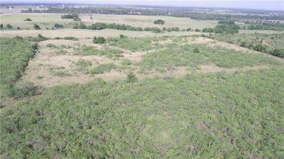 Lexington TX Residential Lots & Land For Sale: $275,000