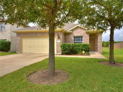 Austin Single Family Home For Sale: 3221 Long Day Dr