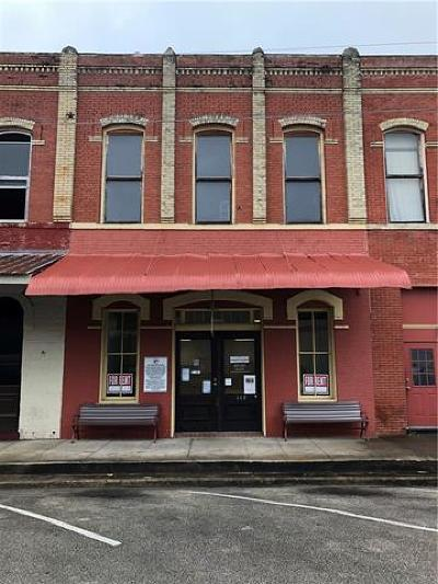 Commercial For Sale: 117 N Main St