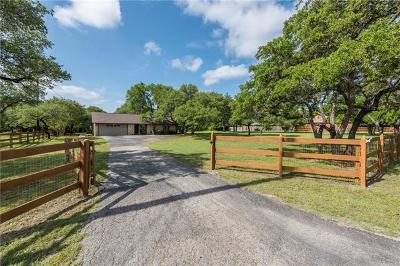 Cedar Park Single Family Home For Sale: 704 Lone Star Dr