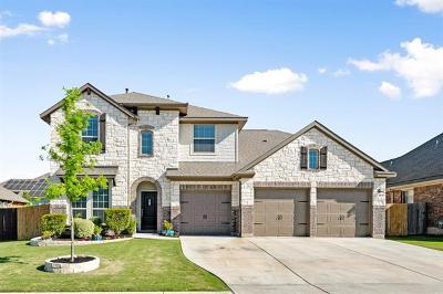 Pflugerville  Single Family Home For Sale: 3204 Plover Rain Way