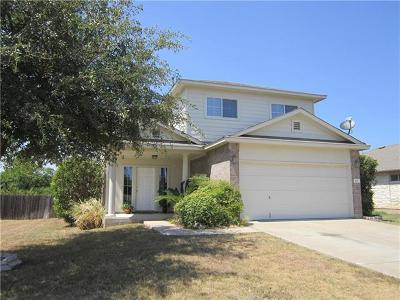 Leander Single Family Home For Sale: 807 Middle Brook Dr