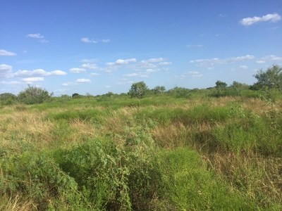 Lockhart Farm For Sale: Schuelke Rd #Track4