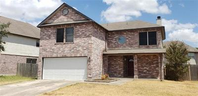 Pflugerville Single Family Home For Sale: 17630 Dansworth Dr