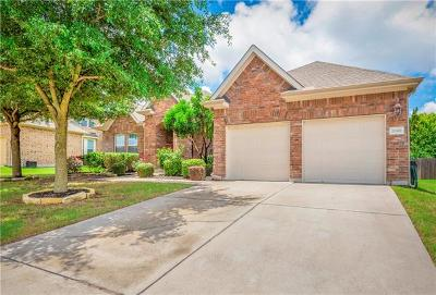 Pflugerville Single Family Home For Sale: 20300 Treyburn Ln