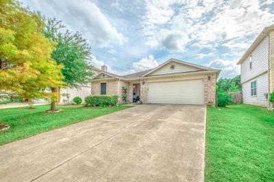 Kyle Single Family Home For Sale: 197 Catalpa Dr