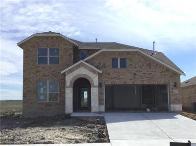 Manor Single Family Home For Sale: 12013 Texana Trl