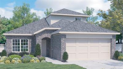 Leander Single Family Home For Sale: 655 Cinnamon Teal Ln
