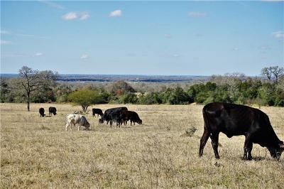 Farm For Sale: Fm 3158