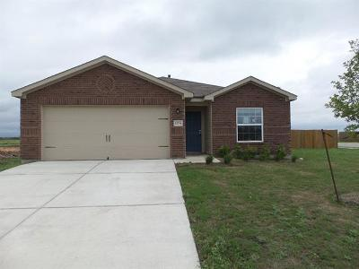 Kyle Single Family Home For Sale: 1324 Violet Ln