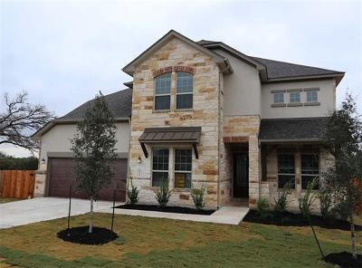 Dripping Springs Single Family Home For Sale: 410 Quartz Dr