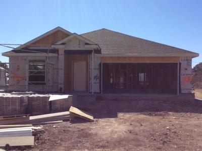 Leander Single Family Home For Sale: 820 Hillrose Dr