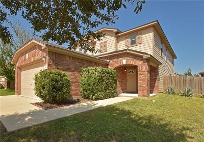 Kyle Single Family Home For Sale: 390 Rummel Dr