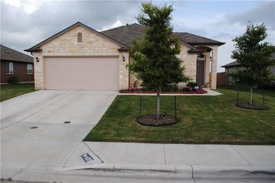 Buda, Kyle Single Family Home For Sale: 425 Voyager Cv