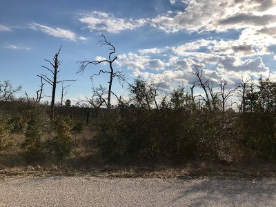 Bastrop TX Residential Lots & Land For Sale: $85,000