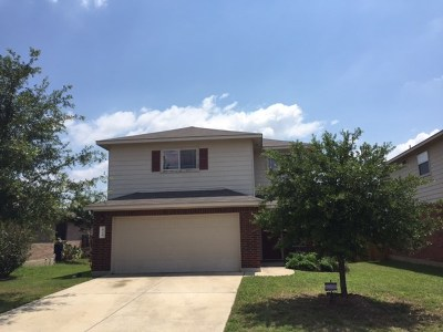Leander Single Family Home For Sale: 424 Emma Rose Trl