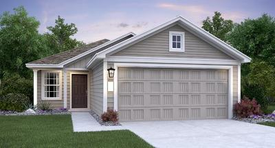 Buda Single Family Home For Sale: 403 Moon Stone Trl