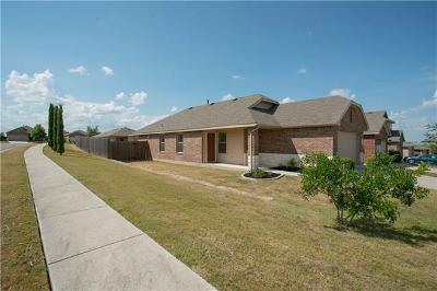 Buda Single Family Home For Sale: 165 Willow Leaf Ln