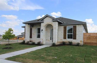 Pflugerville Single Family Home For Sale: 701 Speckled Speckled Dr