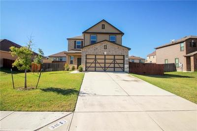 Kyle Single Family Home For Sale: 246 Rummel Dr