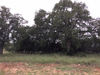 Residential Lots & Land For Sale: 10732 Vista Heights Dr