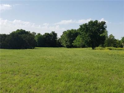 Liberty Hill Residential Lots & Land For Sale: 200 Christine Ln
