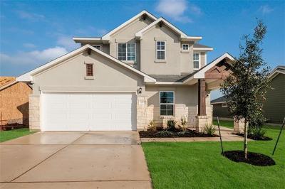 Elgin Single Family Home For Sale: 107 Lake Placid Run Run