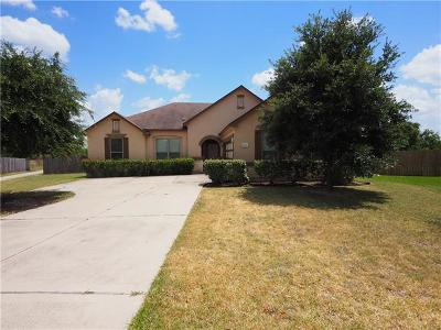 Pflugerville Single Family Home For Sale: 19333 Pencil Cactus Dr