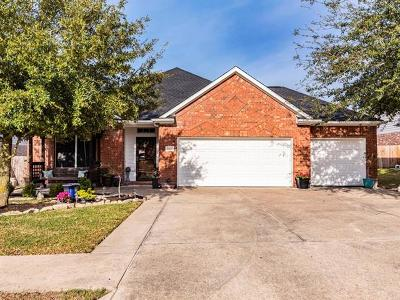 Single Family Home For Sale: 20812 Silverbell Ln