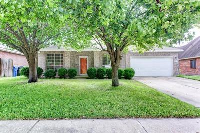 Round Rock Single Family Home For Sale: 16921 Tortoise St