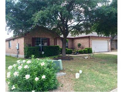 Round Rock Single Family Home For Sale: 1016 Terra St