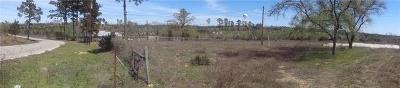 Bastrop Residential Lots & Land For Sale: 145 S Buckhorn Dr