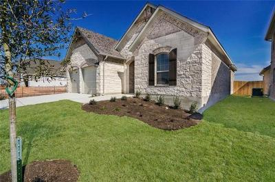 Pflugerville Single Family Home For Sale: 17225 Lathrop Ave