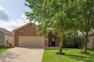 Pflugerville Single Family Home For Sale: 18617 Dry Pond Dr
