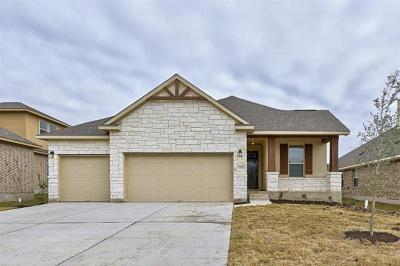 Pflugerville Single Family Home For Sale: 3828 Nightjar View Ter